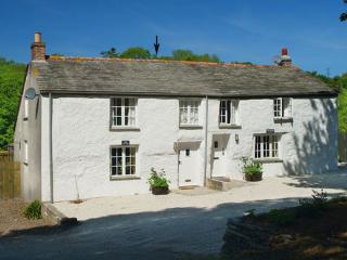 Saint Tudy England Vacation Rentals - Home