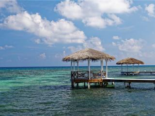 Grand Cayman Cayman Islands Vacation Rentals - Villa
