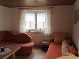 Neukirchen vorm Wald Germany Vacation Rentals - Apartment