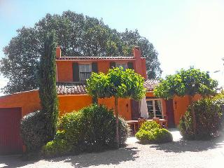 Vidauban France Vacation Rentals - Villa