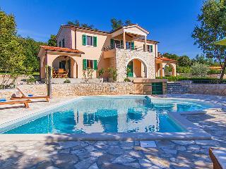 Viskovici Croatia Vacation Rentals - Villa