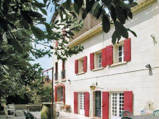 Paluds de Noves France Vacation Rentals - Villa