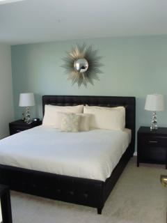 Furnished 1-Bedroom Apartment at Massachusetts Ave & Pearl St Cambridge