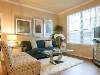 Conroe Texas Vacation Rentals - Apartment