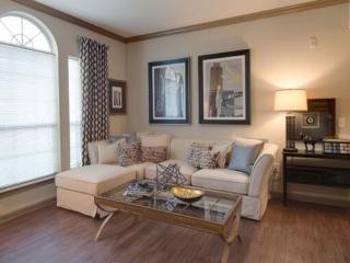 Conroe Texas Vacation Rentals - Apartment