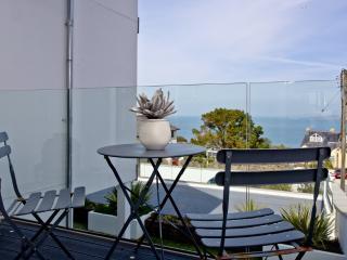 Saint Ives England Vacation Rentals - Apartment