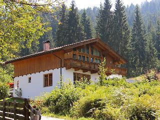 Niederau Austria Vacation Rentals - Villa