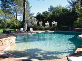 Taradeau France Vacation Rentals - Villa