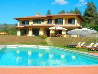 Castelnuovo di Garfagnana Italy Vacation Rentals - Villa