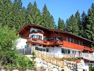 Kitzb hel Austria Vacation Rentals - Apartment