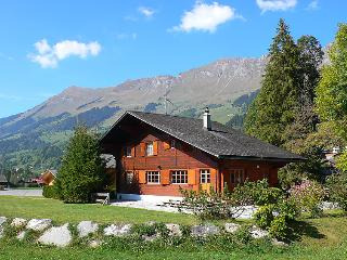 Les Diablerets Switzerland Vacation Rentals - Villa