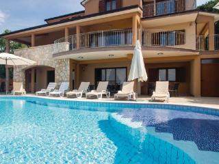 Labin Croatia Vacation Rentals - Villa