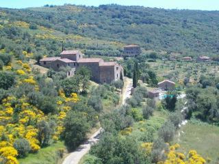 Passignano sul Trasimeno Italy Vacation Rentals - Apartment