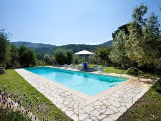Bagno a Ripoli Italy Vacation Rentals - Apartment