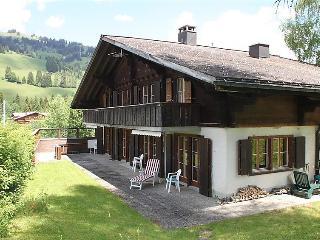 Saanenm ser Switzerland Vacation Rentals - Apartment
