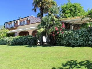 Seravezza Italy Vacation Rentals - Villa