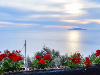 Seiano Italy Vacation Rentals - Apartment