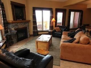 This spacious living area features a cozy fireplace, a flat screen TV and a DVD player