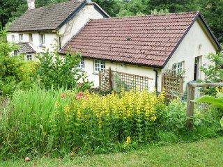 Chulmleigh England Vacation Rentals - Home