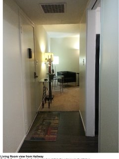 GORGEOUS AND FURNISHED 1 BEDROOM CONDO IN MOUNTAIN VIEW