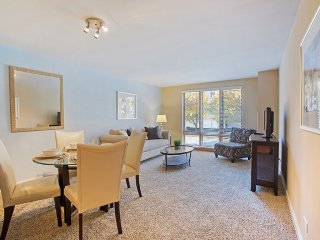 Oak Park Illinois Vacation Rentals - Apartment