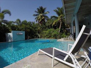 Isla de Vieques Puerto Rico Vacation Rentals - Villa
