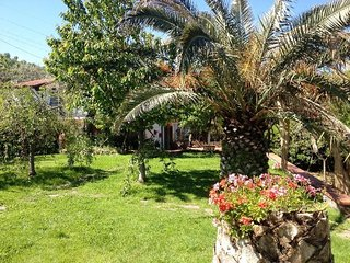 Sant'Agnello Italy Vacation Rentals - Villa