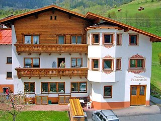 Pettneu am Arlberg Austria Vacation Rentals - Apartment