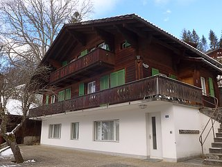 Grindelwald Switzerland Vacation Rentals - Villa