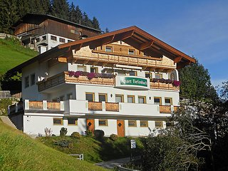 Aschau im Zillertal Austria Vacation Rentals - Apartment