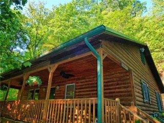 Bryson City North Carolina Vacation Rentals - Cabin