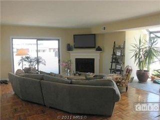 Arlington Virginia Vacation Rentals - Apartment