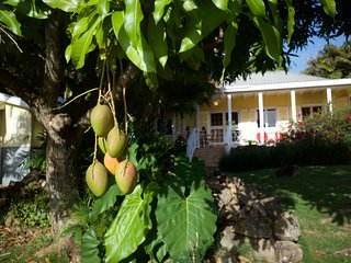 Charlestown Saint Kitts and Nevis Vacation Rentals - Villa