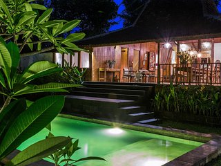 Canggu Indonesia Vacation Rentals - Villa