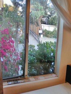 Furnished Studio Apartment at Grand Ave & Mandana Blvd Oakland