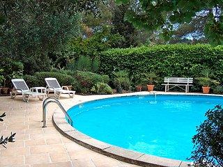 Peymeinade France Vacation Rentals - Villa