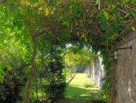 Large Villa with Pool Near Lucca - Villa La Corte