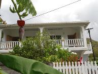 Breadfruit & Papaya - Bequia