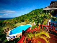 Sand Dollar - St. Lucia