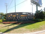 Punta Esmeralda Coral7