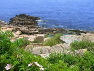 Poet's Cove: Extraordinary views of Sandy Bay and 2 miles to the beach!