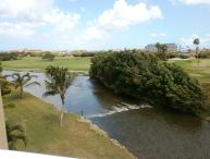 Divi Golf View Studio condo - DR43