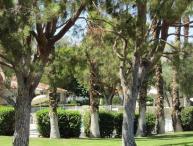 PAD29 - Rancho Las Palmas Vacation Rental - 3 BDRM, 2 BA
