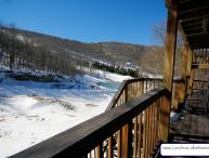 Snow Tree Villa