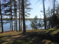 Oakwind North: Towering Pines with a Relaxing Setting at this Eagles Nest Lake #2 cabin!