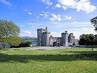 Gothic Castle Estate