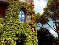 Tuscany Villa with Pool and Gardens - Villa Placido
