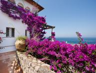 Charming Apartment near Sorrento - Alice