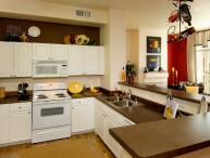 Simply Perfect - Elegant 1 Bedroom Apartment in Fremont