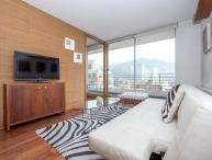 Cozy One Bedroom Apartment in Providencia